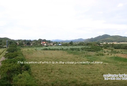 For Sale Land 199-1-49 rai in Pak Chong, Nakhon Ratchasima, Thailand