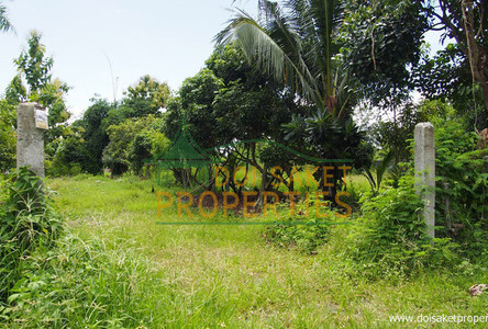 For Sale Land 0-2-16 rai in Doi Saket, Chiang Mai, Thailand