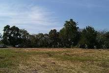 For Sale Land 2-1-78 rai in Pak Chong, Nakhon Ratchasima, Thailand