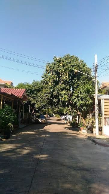 For Sale 3 Beds 一戸建て in Sai Noi, Nonthaburi, Thailand   Ref. TH-NWIAIPNQ