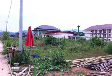 For Sale Land 796 sqm in Mueang Chiang Rai, Chiang Rai, Thailand