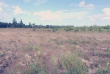 For Sale Land 169,440 sqm in Sawi, Chumphon, Thailand