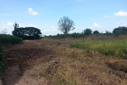 For Sale Land 48,092 sqm in Mueang Nakhon Ratchasima, Nakhon Ratchasima, Thailand