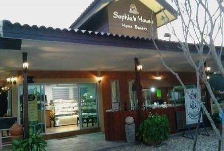 For Sale Business 641 sqm in San Sai, Chiang Mai, Thailand