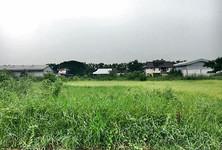 Продажа: Земельный участок 2 рай в районе Nong Chok, Bangkok, Таиланд