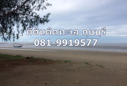 For Sale Land 39 sqwa in Kui Buri, Prachuap Khiri Khan, Thailand