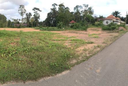 ขาย ที่ดิน 2 ไร่ เมืองกระบี่ กระบี่