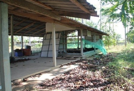 For Sale Land 10 rai in Pran Buri, Prachuap Khiri Khan, Thailand