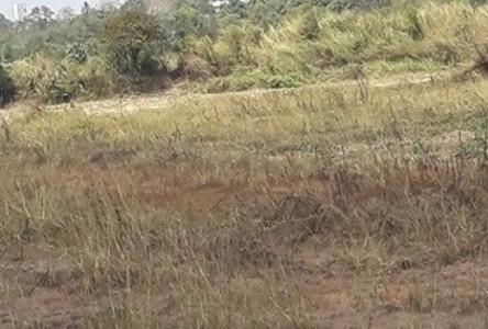 ขาย ที่ดิน 32-3-51 ไร่ กบินทร์บุรี ปราจีนบุรี