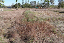 For Sale Land 2 rai in Nong Han, Udon Thani, Thailand