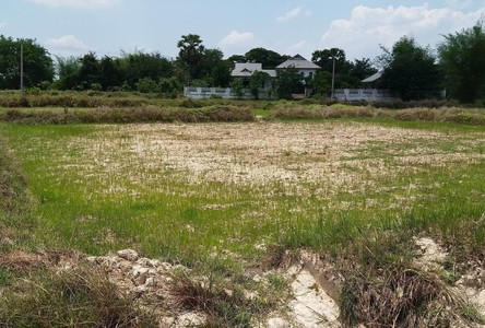 For Sale Land 1-3-94 rai in Phen, Udon Thani, Thailand