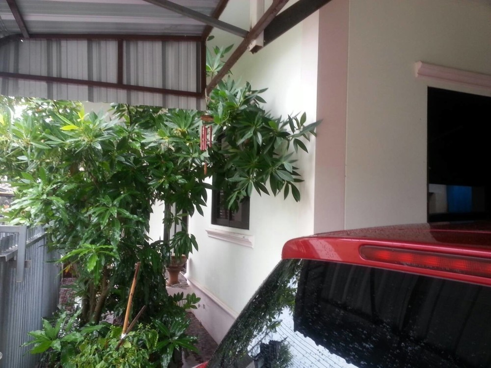 For Sale 3 Beds House in Saraphi, Chiang Mai, Thailand | Ref. TH-SNJDKJKY