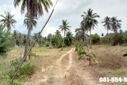 For Sale Land 18 rai in Sattahip, Chonburi, Thailand