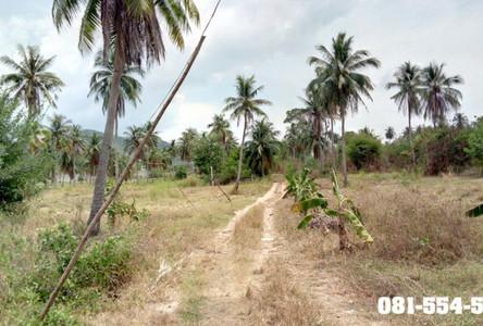 Продажа: Земельный участок 18 рай в районе Sattahip, Chonburi, Таиланд