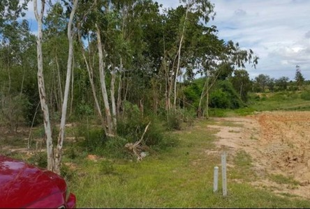 For Sale Land 12 rai in Tha Yang, Phetchaburi, Thailand