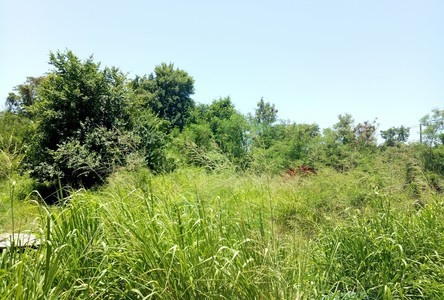 For Sale Land 22-2-3 rai in Bang Lamung, Chonburi, Thailand