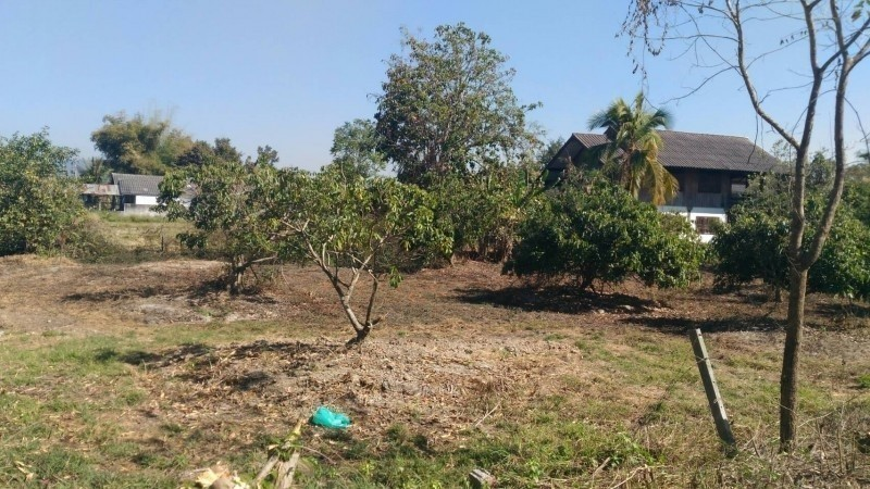 For Sale Land 100 sqwa in San Kamphaeng, Chiang Mai, Thailand | Ref. TH-JJZZOKJP