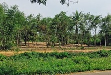 For Sale Land 3 rai in Doi Lo, Chiang Mai, Thailand