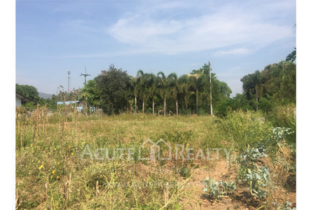 For Sale Land in San Sai, Chiang Mai, Thailand