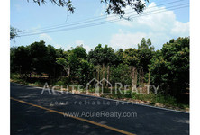 For Sale Land in Fang, Chiang Mai, Thailand
