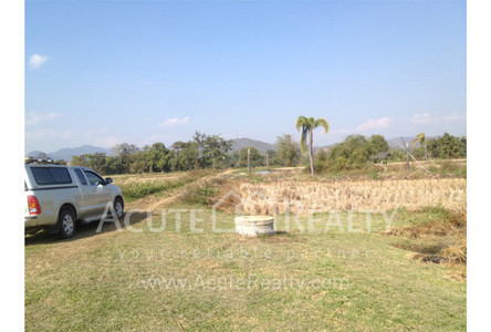For Sale Land in Chiang Rai, North, Thailand