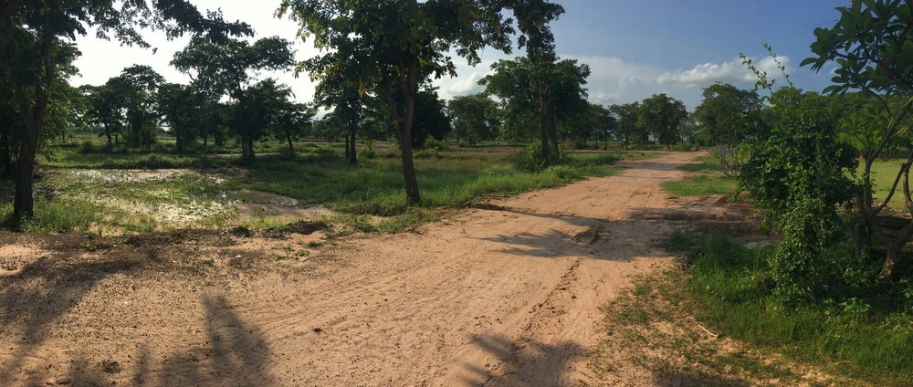 For Sale or Rent Land 70-0-59 rai in Lam Plai Mat, Buriram, Thailand | Ref. TH-DKDWBIHF