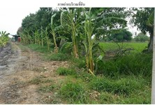 For Sale Land in Don Tum, Nakhon Pathom, Thailand
