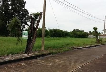 Продажа: Земельный участок в районе Khlong Luang, Pathum Thani, Таиланд