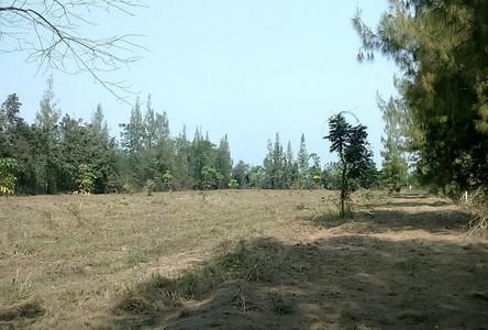 Продажа: Земельный участок в районе Suan Phueng, Ratchaburi, Таиланд