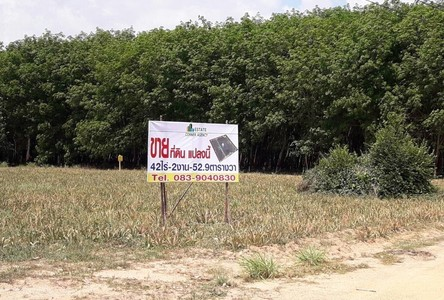 For Sale Land in Nikhom Phatthana, Rayong, Thailand