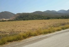 For Sale Land 11 rai in Wang Muang, Saraburi, Thailand
