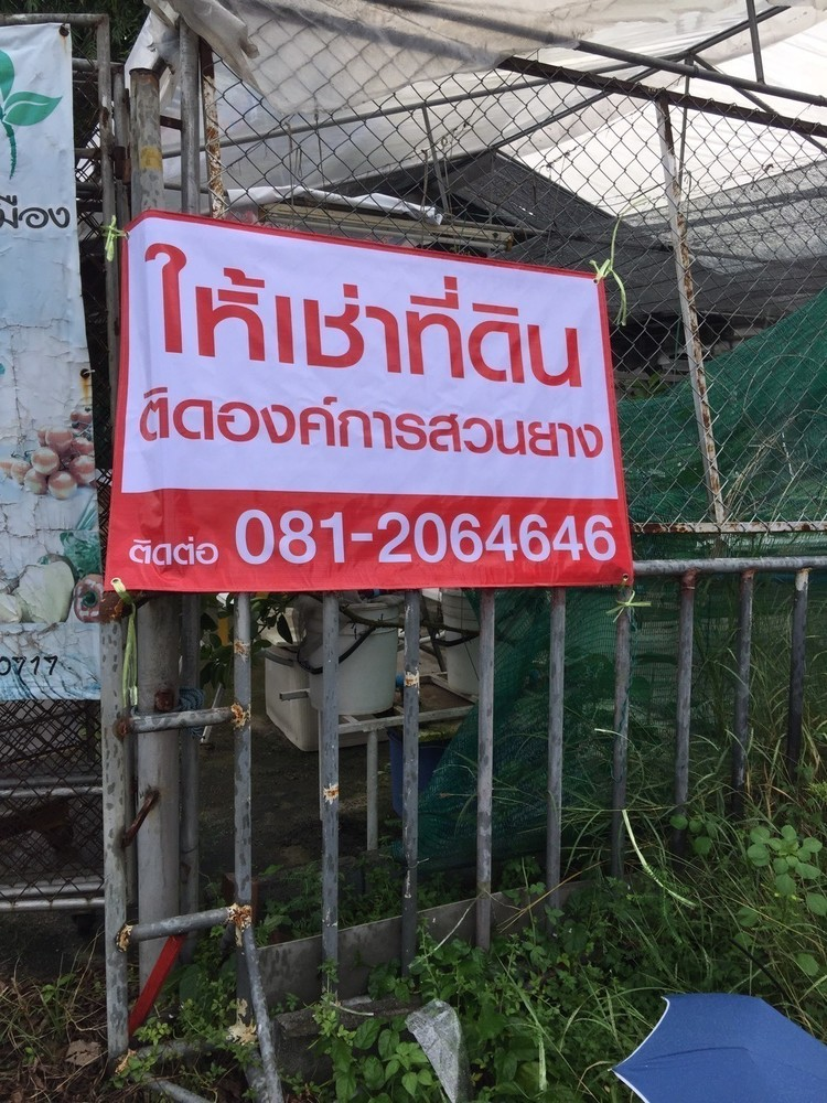 For Rent Land 50 sqwa in Mueang Trang, Trang, Thailand | Ref. TH-XMBWUJVS