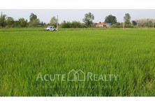 For Sale Land 2,112 sqm in San Kamphaeng, Chiang Mai, Thailand