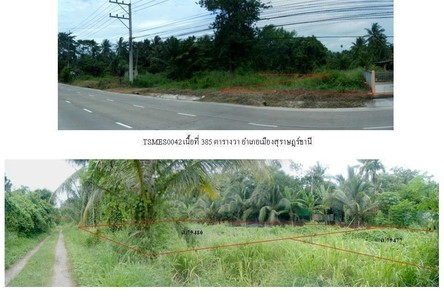 For Sale Land 0-3-85 rai in Mueang Surat Thani, Surat Thani, Thailand