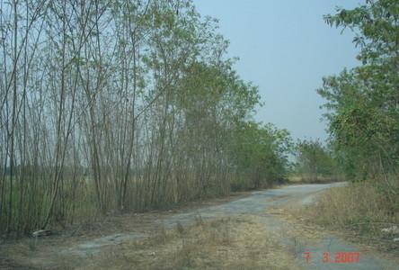 For Sale Land 2 rai in Lam Luk Ka, Pathum Thani, Thailand