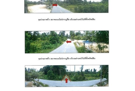 For Sale Land 15-1-8 rai in Mueang Narathiwat, Narathiwat, Thailand