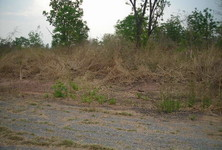 For Sale Land 2-0-60 rai in Chok Chai, Nakhon Ratchasima, Thailand