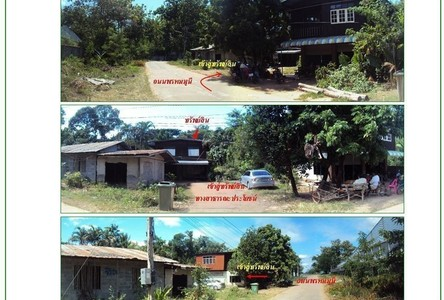 For Sale 一戸建て 196 sqm in Loeng Nok Tha, Yasothon, Thailand