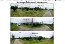 For Sale Land 1-3-54.5 rai in Ban Hong, Lamphun, Thailand