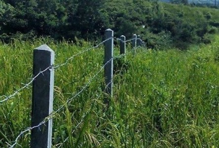For Sale Land 17 rai in Khao Kho, Phetchabun, Thailand