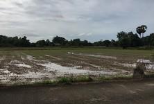 Продажа: Земельный участок 3-2-30 рай в районе Ban Na, Nakhon Nayok, Таиланд