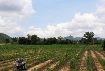 For Sale Land 3,698,400 sqm in Mueang Kanchanaburi, Kanchanaburi, Thailand
