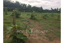 For Sale Land in Chom Thong, Chiang Mai, Thailand