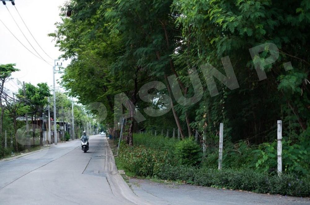 For Sale Land 1,600 sqwa in Lak Si, Bangkok, Thailand   Ref. TH-PGWTEVLR