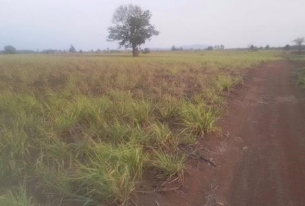 For Sale Land 38 rai in Kabin Buri, Prachin Buri, Thailand