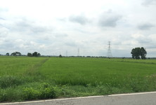 For Sale Land 33 rai in Bang Nam Priao, Chachoengsao, Thailand