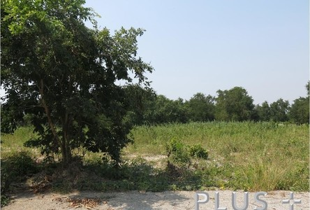Продажа: Земельный участок 1-0-4 рай в районе Prachuap Khiri Khan, West, Таиланд