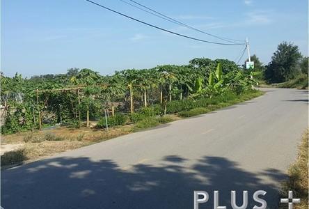 For Sale Land 15 rai in Prachuap Khiri Khan, West, Thailand