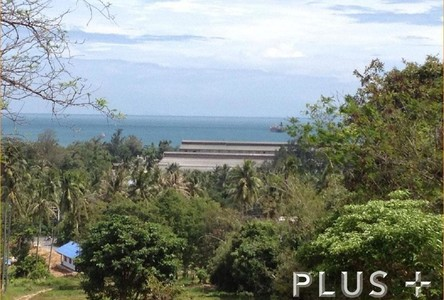 For Sale Land 16-2-37 rai in Phuket, South, Thailand