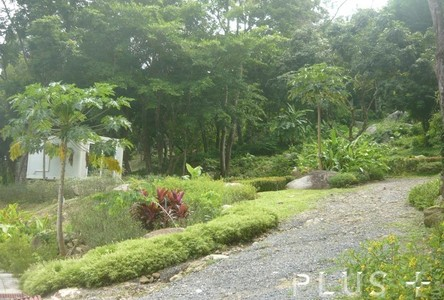 For Sale Land 4-0-83 rai in Phuket, South, Thailand